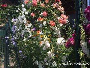 Blumen 12v12 1506